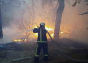 Opt morți, după ce zeci de incendii au izbucnit în Ucraina în apropierea zonei controlate de separatiști