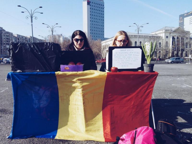munca-protest fb irina gache