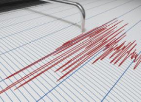 Cutremur cu magnitudinea 7,3 în Noua Zeelandă. A fost emisă alertă de tsunami