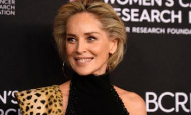 """Sharon Stone, dezvăluiri despre accidentul cerebral masiv suferit: """"Oamenii m-au tratat într-un mod brutal... Am pierdut tot"""""""