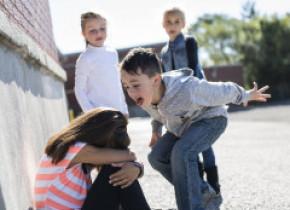 Legea care interzice bullying-ul în şcoli a intrat în vigoare