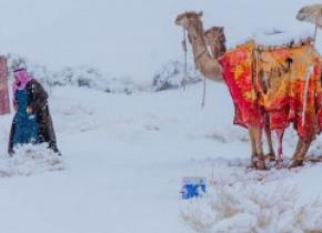 De ce ninge în deșert. Explicația climatologului Roxana Bojariu VIDEO