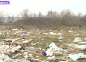 """Râul din Orăștie, poluat cu tone de gunoaie. Primarul orașului: """"Noi nu avem cu cine să aplicăm sancțiuni, n-avem personal"""""""