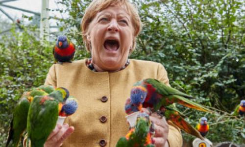 FOTO: Angela Merkel a vizitat parcul de păsări din Marlow și a oferit imaginea zilei