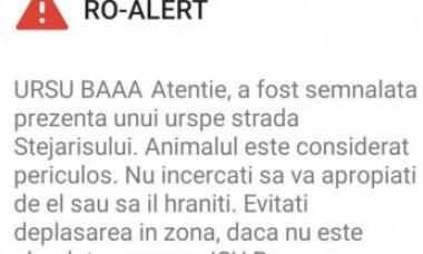 """Oamenii din Brașov au primit un mesaj RO-ALERT care începea cu avertismentul """"URSUL BAAA"""""""