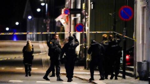 Masacru în Norvegia. Cel puțini 5 morți, după ce un bărbat a tras cu arcul în trecători