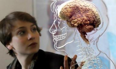 Vârsta de la care creierul nu mai produce neuroni. Ce au descoperit acum oamenii de știință