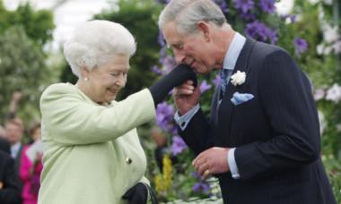 Limbajul non-verbal o dă de gol. Cum se înțelege, de fapt, Regina Elisabeta a II-a cu cei patru copii