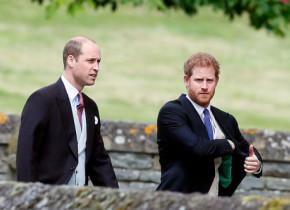 """Prințul William, revoltat de comportamentul lui Harry după ce s-a mutat în SUA: """"Succesul de la Hollywood i s-a urcat la cap!"""""""