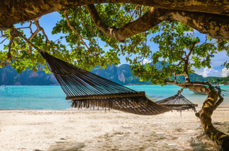Hammock,Hanging,Under,Exotic,Tree,On,Beach,With,White,Sand