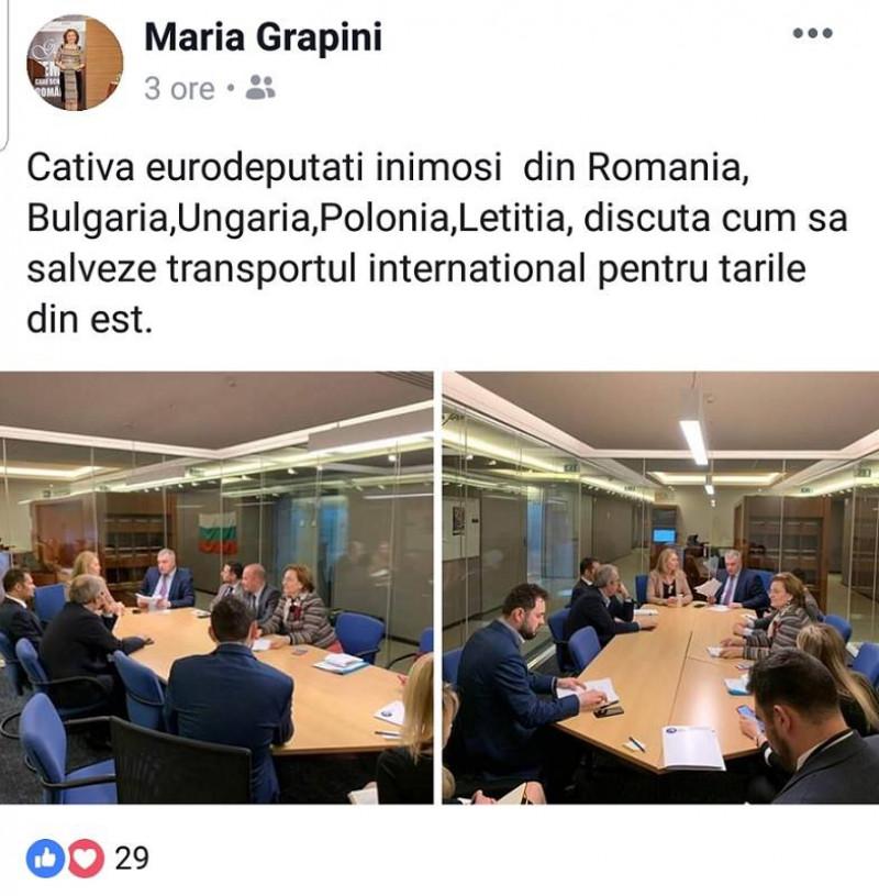 facebook maria grapini